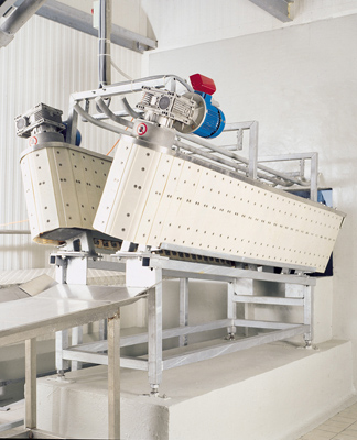 Sheep Conveyors Livestock Conveyor Systems Abattoir