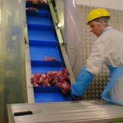 flighted meat conveyor