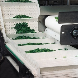 salad conveyor handling images
