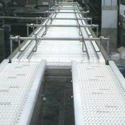 bespoke large plastic belt conveyor system