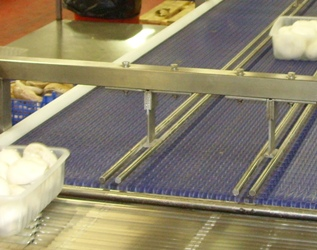 Diverter Conveyor