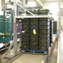 Pallet Conveyor Installation
