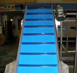 Belt Incline Conveyor with flights